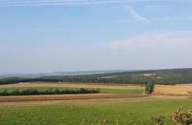 Österreich ist Spitzenreiter im Bio-Landbau